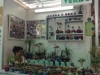 8-arte-verde
