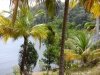 Bahia de Mata, Parque Nacional Alejandro de Humbolt