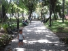 Quinta de los Molinos, La Habana