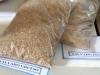 0008 Cereales Santiago de Cuba
