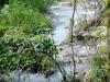 El vertido de Suchel recorre cientos de metros antes de llegar al río.