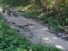 Vertido de Suchel corriendo paralelo a la Vía Blanca.