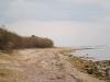 playa-marabu