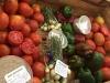 variedad-semillayvegetales2