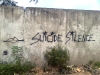 08-suicide-silence-calle-114