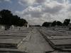 028 Mass graves.