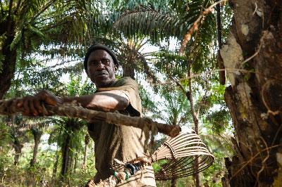 Baggie working  on his farm in Mokpangumba.